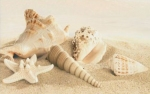 Декор Gracia ceramica Amalfi sand decor 01